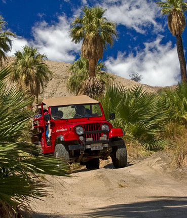 DESERT ADVENTURE - RED JEEP TOURS